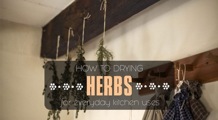 How To Dry Herbs Like Oregano Chives