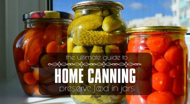 ultimate guide to home canning how to preserve food in jars