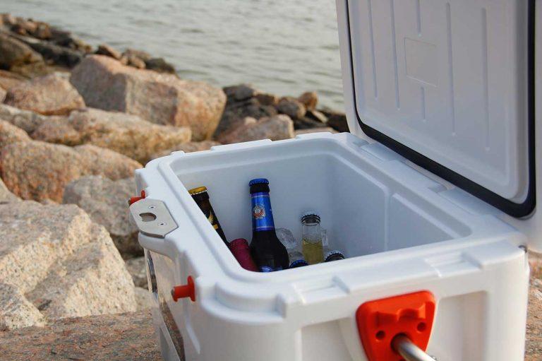 Best 20 Quart Coolers