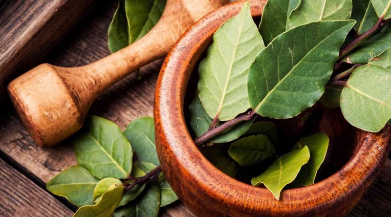 Curry Leaves Substitute - Bay Leaves